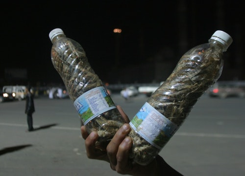 A boy holds two bottles filled with locusts at the Sabyien square in Sanaa