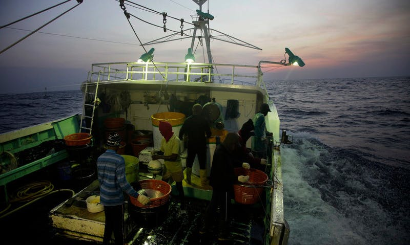 How Taiwan's Seafood Sector Can Steer Toward Ethical Labor Standards